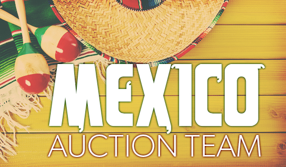 Mexico Auction Team