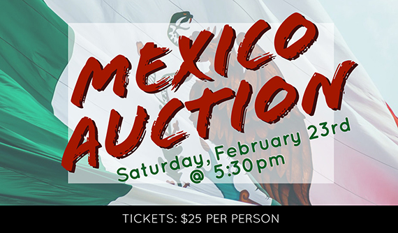 Mexico Auction 2019