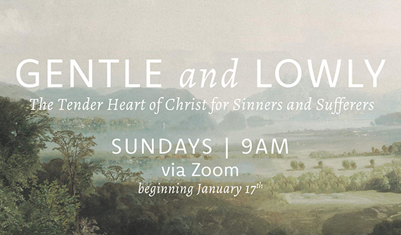 Gentle and Lowly: The Tender Heart of Christ for Sinners and Sufferers